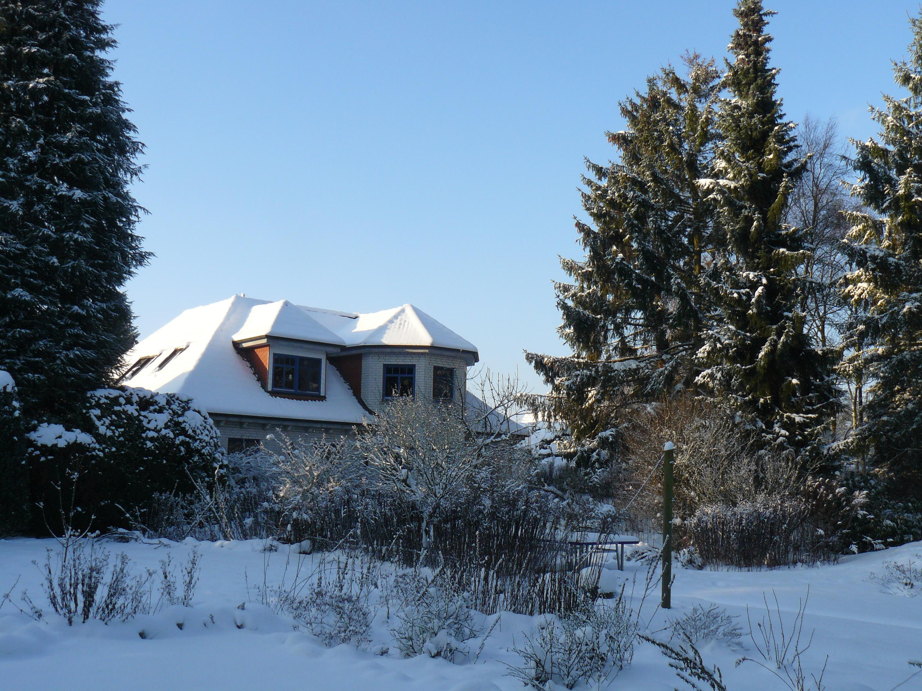 flientje von hinten im Winter 2010